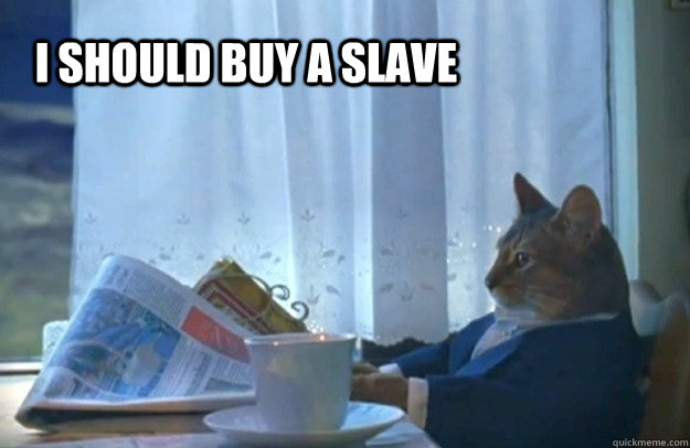 i should buy a slave - Sophisticated Cat