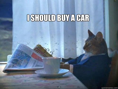 i should buy a car - The One Percent Cat