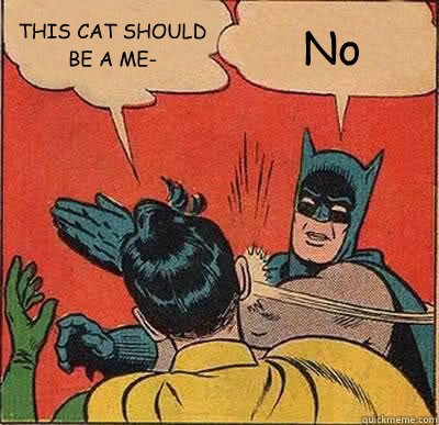 this cat should be a me no - Batman Slapping Robin