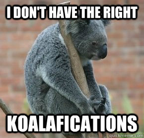 i dont have the right koalafications - Zen Koala from the Future-Not-Future