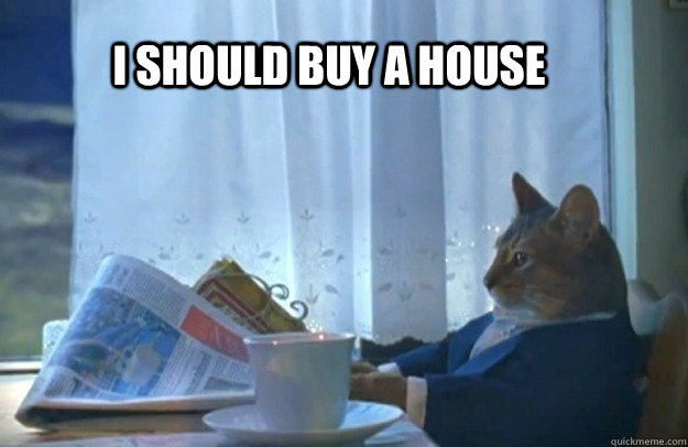 i should buy a house - Sophisticated Cat