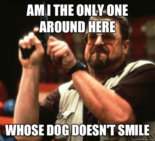 Am i the only one around here Whose dog doesnt smile - Am I The Only One Around Here