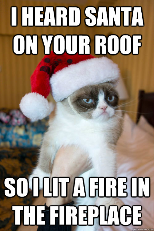 Heard santa on your roof so i lit a fire in the fireplace grumpy cat