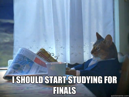 i should start studying for finals - The One Percent Cat