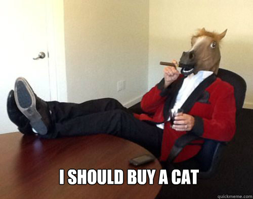 i should buy a cat -