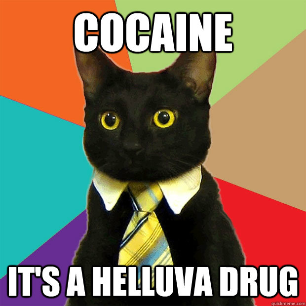 cocaine its a helluva drug - Business Cat