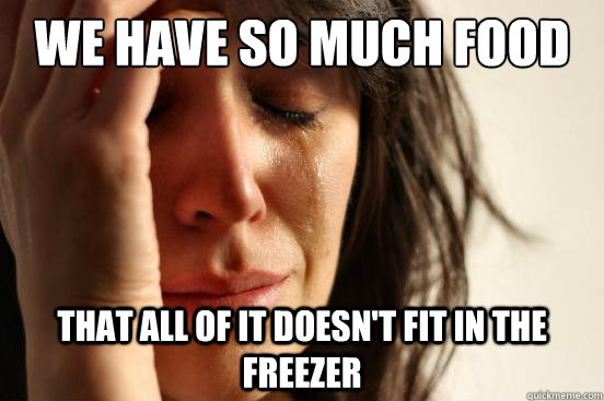 we have so much food that all of it doesnt fit in the freez - First World Problems