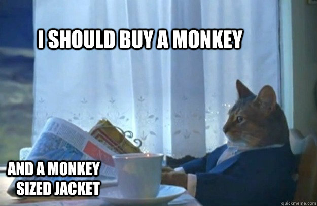 i should buy a monkey and a monkey sized jacket - Sophisticated Cat