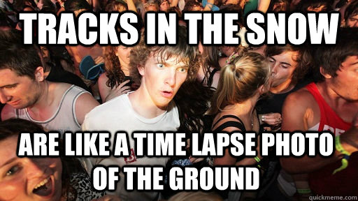 tracks in the snow are like a time lapse photo of the ground - Sudden Clarity Clarence