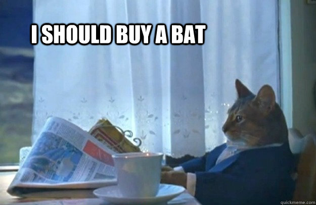i should buy a bat - Sophisticated Cat