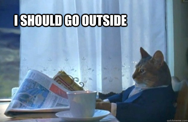 i should go outside - Sophisticated Cat