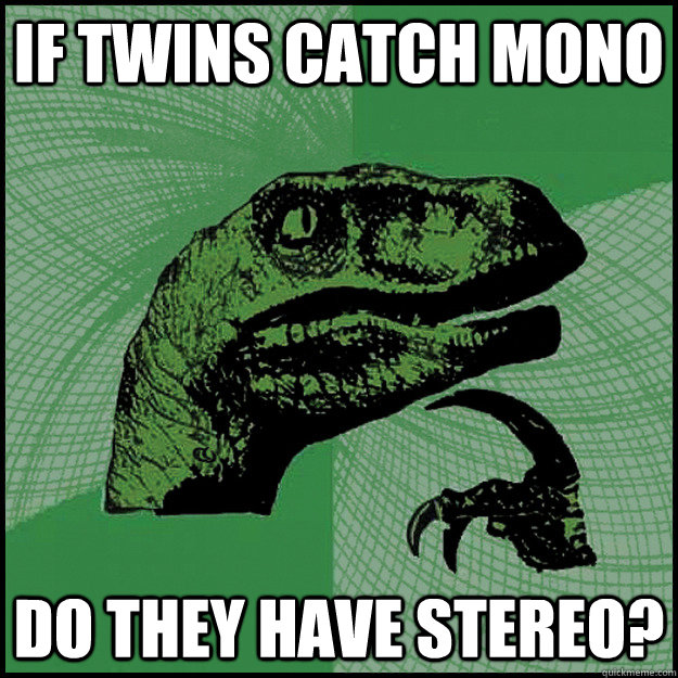 if twins catch mono do they have stereo - New Philosoraptor