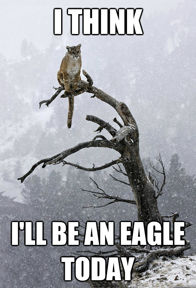 i think ill be an eagle today -