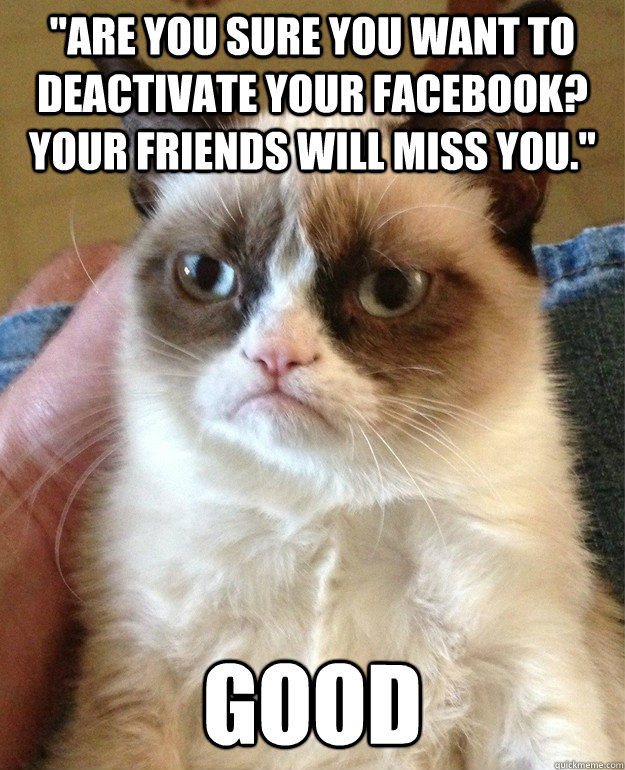 are you sure you want to deactivate your facebook your fri - Grumpy Cat