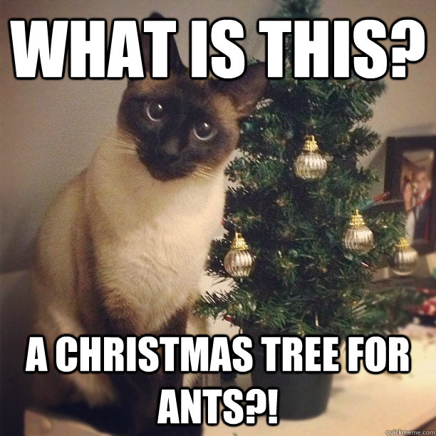 what is this a christmas tree for ants -