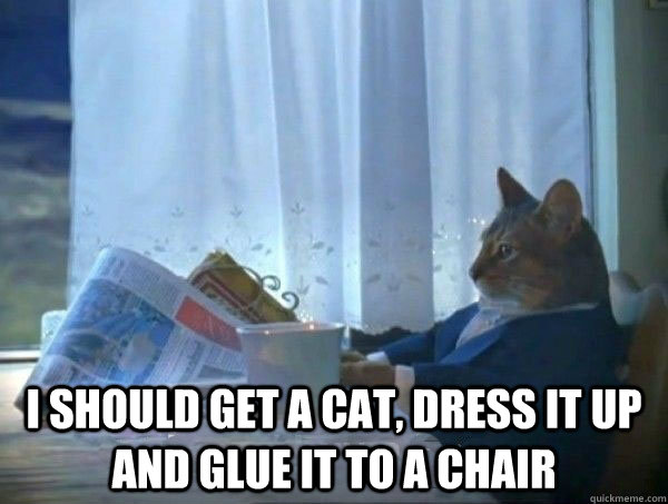 i should get a cat dress it up and glue it to a chair -