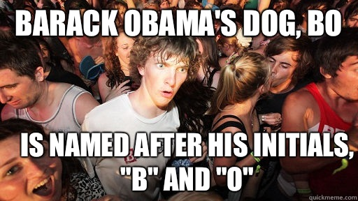 Barack Obamas Dog Bo is named after his initials B and O - Sudden Clarity Clarence