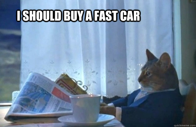 i should buy a fast car - Sophisticated Cat