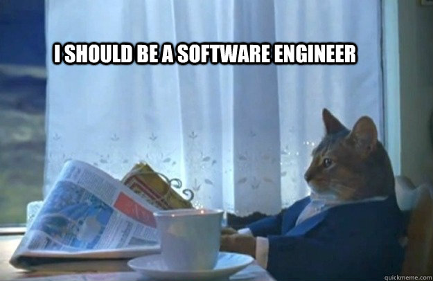i should be a software engineer - Sophisticated Cat