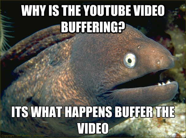 why is the youtube video buffering its what happens buffer  - Bad Joke Eel
