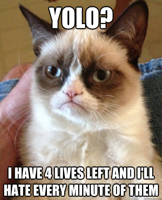 yolo i have 4 lives left and ill hate every minute of them - grumpy cat