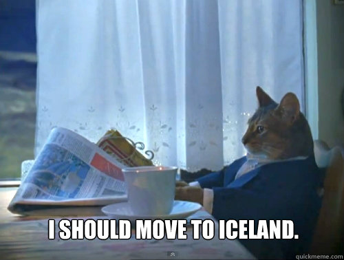 i should move to iceland  - The One Percent Cat