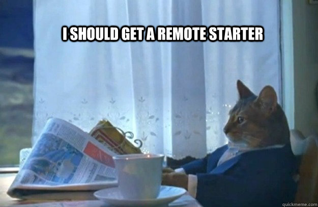 i should get a remote starter - Sophisticated Cat