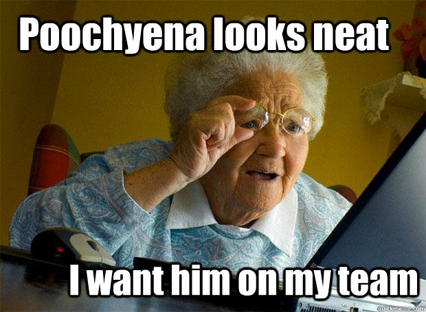 poochyena looks neat i want him on my team - Grandma finds the Internet