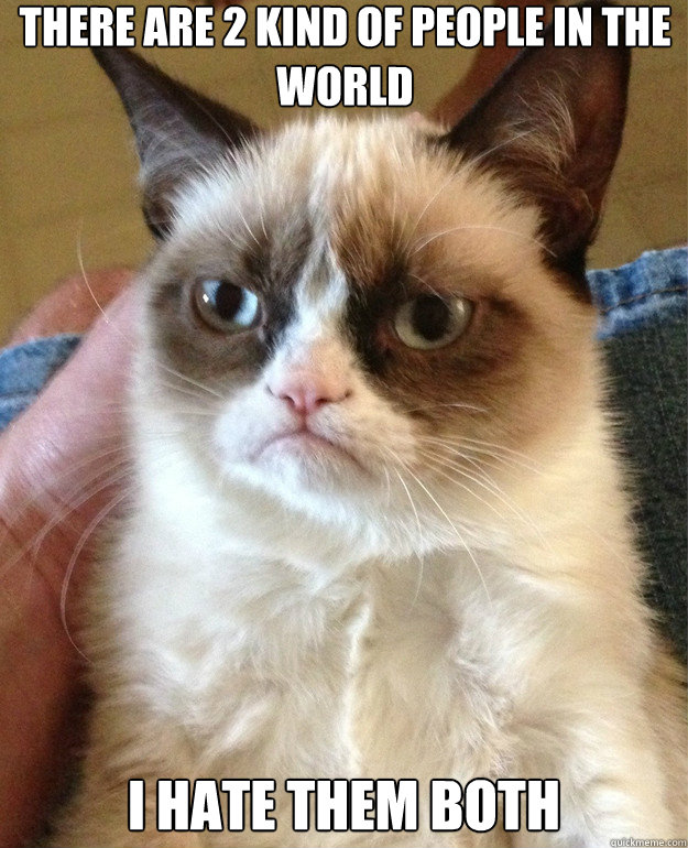 there are 2 kind of people in the world i hate them both - Grumpy Cat