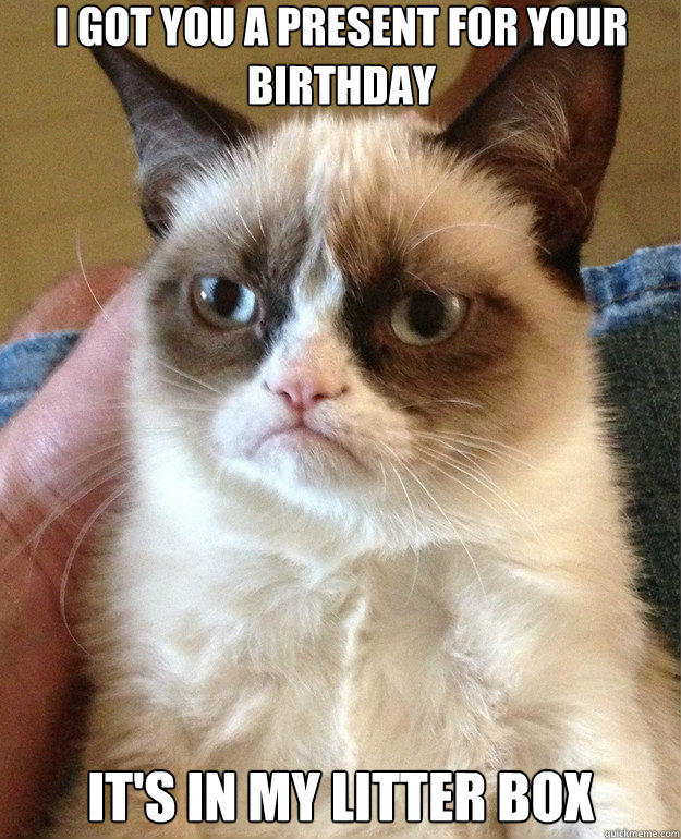 i got you a present for your birthday its in my litter box  - Grumpy Cat