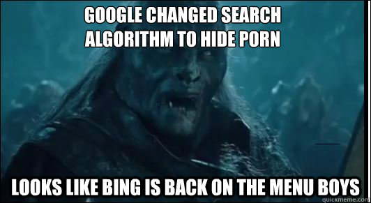 google changed search algorithm to hide porn looks like bin -