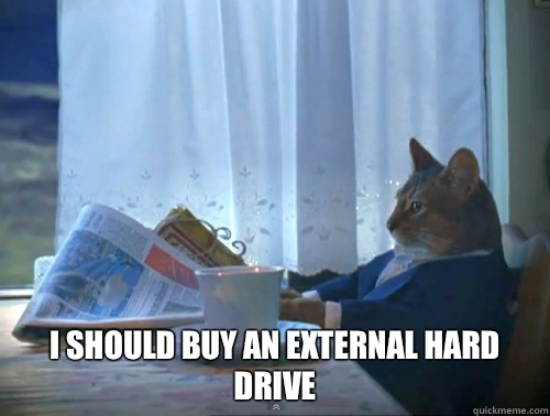 I should buy an external hard drive - The One Percent Cat