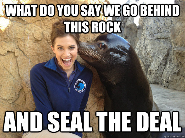 what do you say we go behind this rock and seal the deal - Crazy Secret