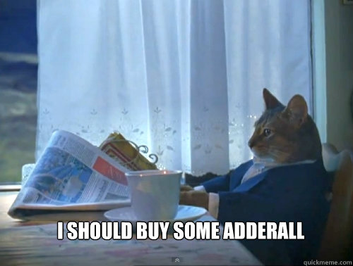 i should buy some adderall  - The One Percent Cat