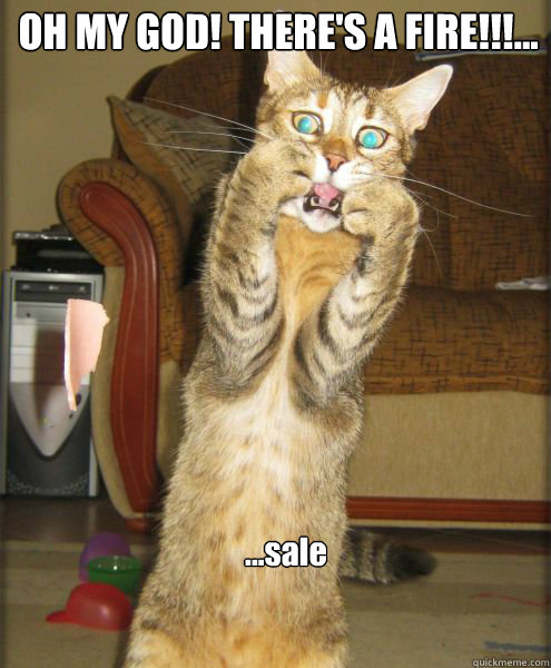 sale oh my god theres a fire - Aghast Cat Pounce