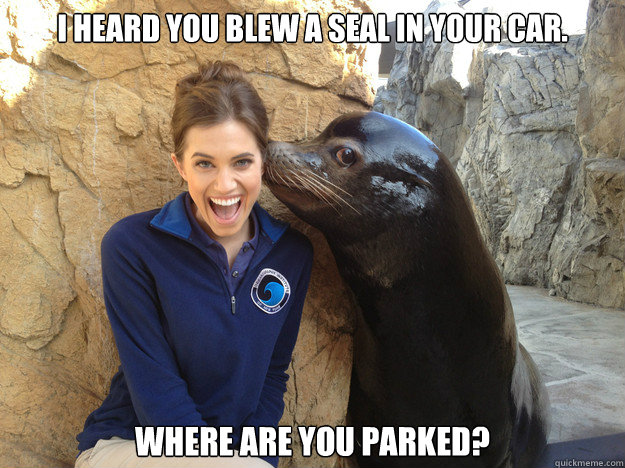 i heard you blew a seal in your car where are you parked - Crazy Secret