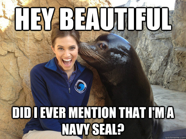 hey beautiful did i ever mention that im a navy seal - Crazy Secret