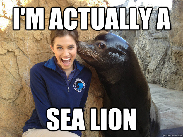im actually a sea lion - Crazy Secret