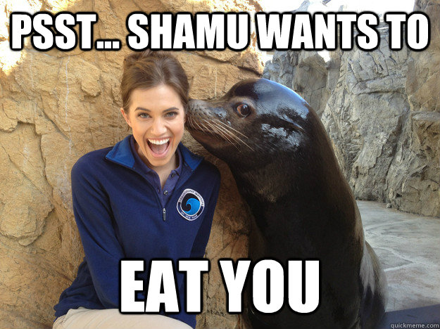 psst shamu wants to eat you - Crazy Secret