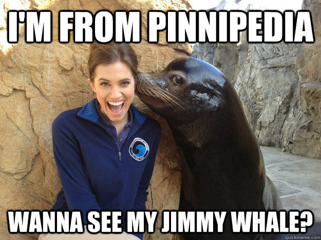 im from pinnipedia wanna see my jimmy whale - Crazy Secret