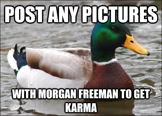 post any pictures with morgan freeman to get karma - Actual Advice Mallard