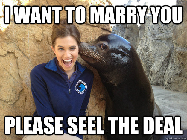 i want to marry you please seel the deal - Crazy Secret