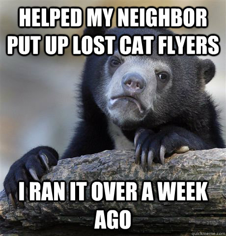 helped my neighbor put up lost cat flyers i ran it over a w - Confession Bear