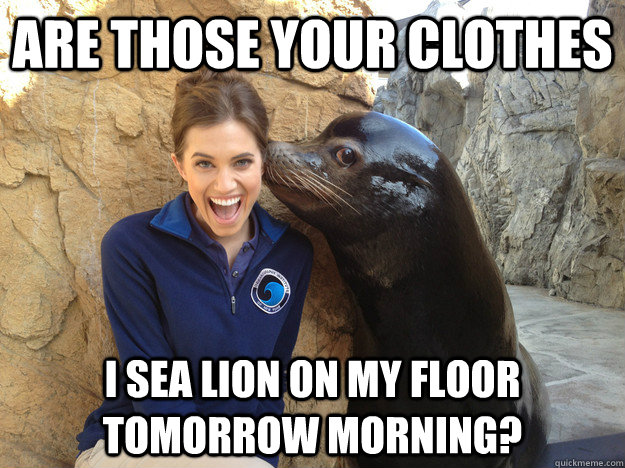 are those your clothes i sea lion on my floor tomorrow morni - Crazy Secret
