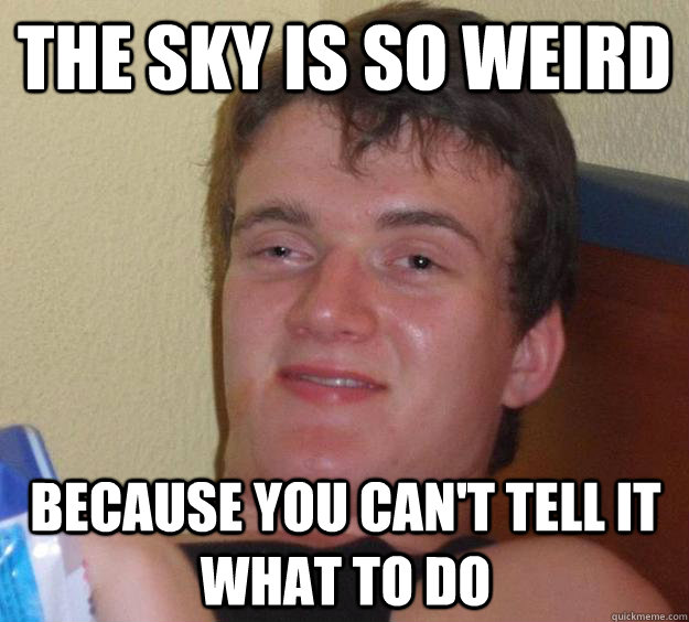 the sky is so weird because you cant tell it what to do - 10 Guy