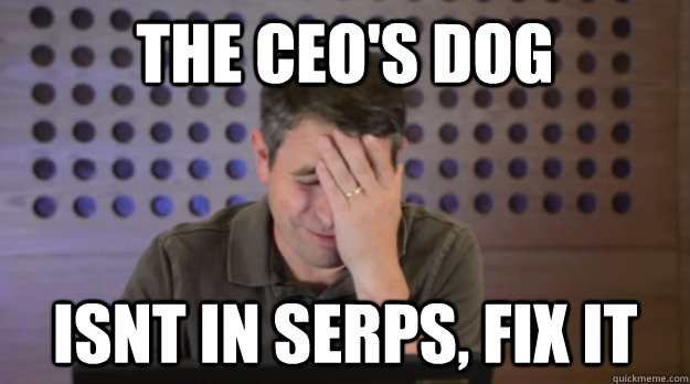 the ceos dog isnt in serps fix it - Facepalm Matt Cutts