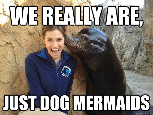 we really are just dog mermaids - Crazy Secret
