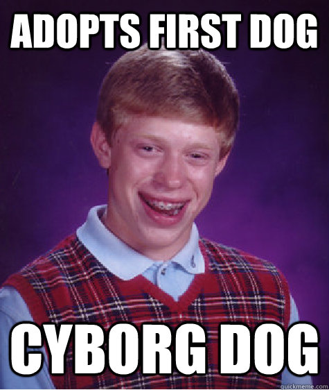 adopts first dog cyborg dog - Bad Luck Brian