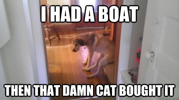 i had a boat then that damn cat bought it -
