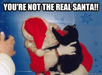 youre not the real santa - Santa